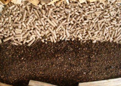 Biocombustíveis Sólidos