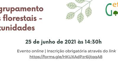 Evento – Promoção do agrupamento de proprietários florestais | Desafios e oportunidades